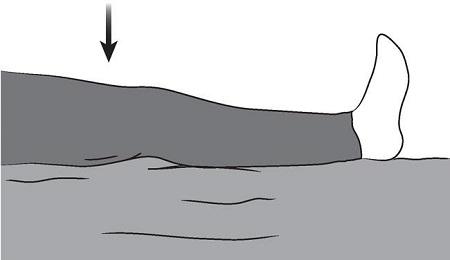 تمرینات مربوط به عضلات چهار سر ران