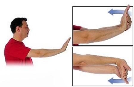 کشش عضله خم کننده مچ دست